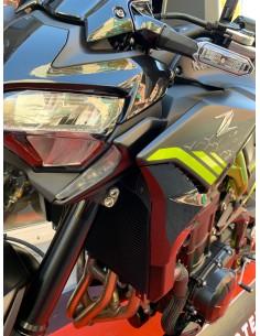 Embellecedor Portamatricula Yamaha X-max 125
